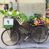 La Bottega della Frutta